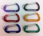Basic Carabiner w/Split Ring